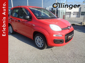 Fiat Panda 1,2 69 Easy bei öllinger in
